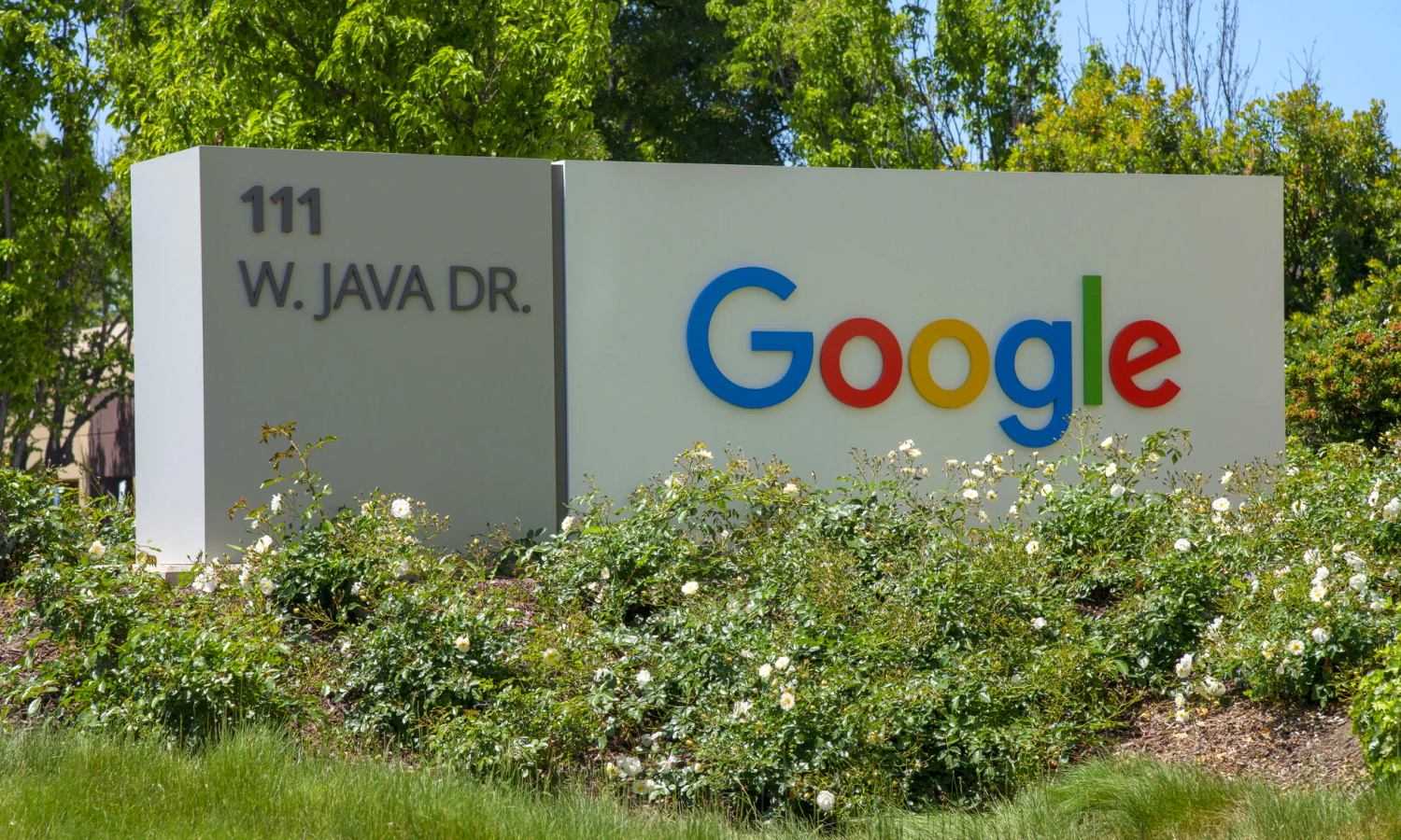 Google to enable 2FA for all users, add privacy labels to Android apps