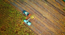 CISA, FBI, and NSA warn of BlackMatter attacks on agriculture and other critical infrastructure
